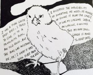 Soul Bird 1